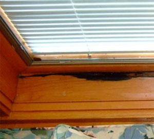 Rot At Sill Of Wood Window