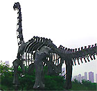 The Field Museum of Natural History is world famous for its dinosaurs.