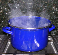Steam from cooking can humidify the air and contribute to window condensation