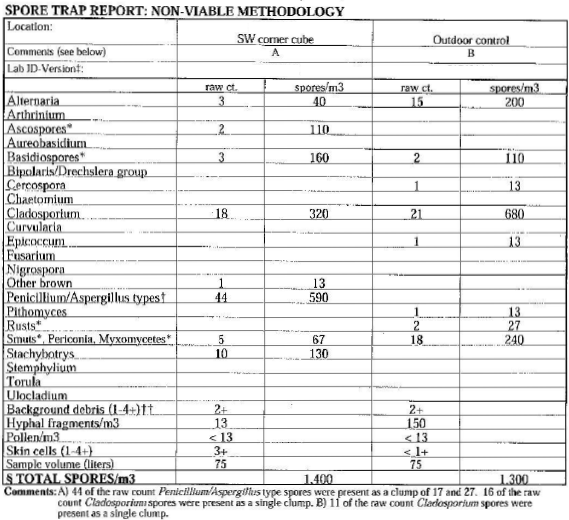 Sample test for mold in walls report