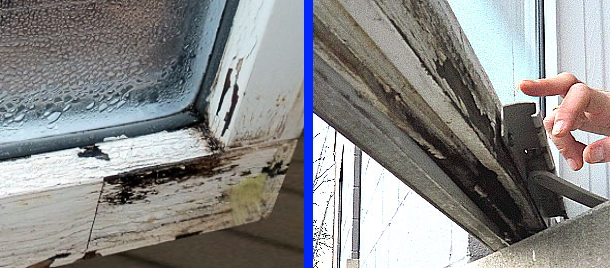 Condensation can seriously damage wood windows. Don't let windows get wet